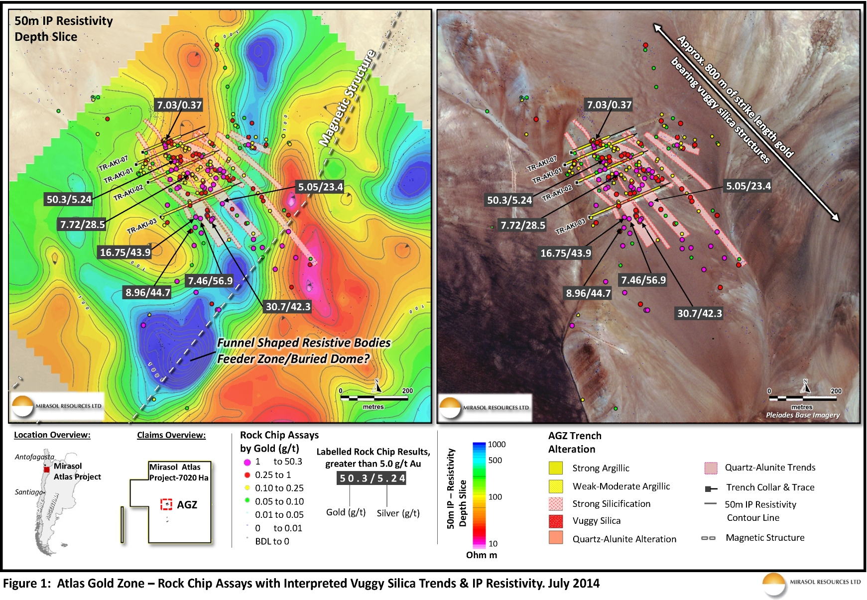 Figure 1: Atlas Gold Zone – Rock Chip Assays with Interpreted Vuggy Silica Trends & IP Resistivity. July 2014